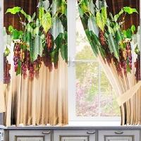Фотошторы для кухни Виноградные грозди