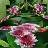 Постельное белье цветы 3D 071