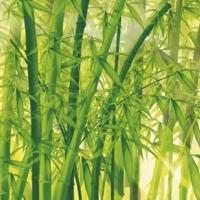 Подушка Бамбук в перкале