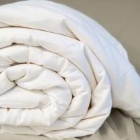 Одеяло натуральный шелк Оптим
