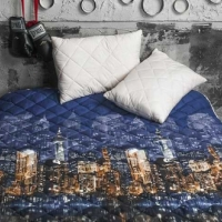 Одеяло покрывало и подушки бамбук Ночной город